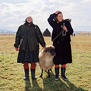 Two Romanian peasant women with a sheep at the livestock market in Ocna Sugatag in Maramures, Romania. Whereas in most countries sheep are reared for wool and meat, in Romania these are seen as by-products and the real purpose of the flock is to produce branza or cheese.