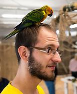 Papugarnia nowe miejsce zabaw i edukacji w Białymstoku