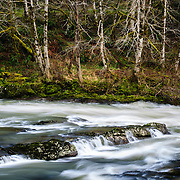A waterfall in the forest near Astoria, Oregon cascading over rocks.
