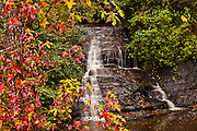 Colorful autumn foliage as leaves change colors at a waterfall along the Blue Ridge National Park near Asheville, North Carolina.
