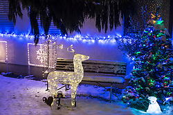 Illuminated reindeer with Christmas tree in front of house, Bavaria, Germany