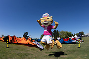 2018 Buenos Aires Youth Olympic Games. <br /> <br /> Five sailing events with 100 sailors from 44 different nations are taking place at Club Náutico San Isidro, Argentine including Girl's and Boy's Kiteboarding (Twin Tip Racing) and the Mixed Multihull (Nacra 15). Elsewhere, Girl's and Boy's Windsurfing (Techno 293+) are returning for its third consecutive Games from 6 to 18 October 2018.<br /> © Matias Capizzano / World Sailing
