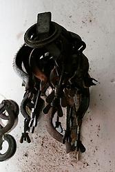 Questi anelli sono delle graffe che servono ad unire due tubi per il travaso del vino dalle cisterne.