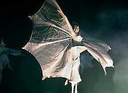 Nederland, Nijmegen, 1-1-2005..De theatergroep Close Act geeft een uitvoering op het Keizer karelplein bij de opening van de viering tgv het 2000 jarig bestaan van deze oudste stad van Nederland...Straattheater, steltlopers, fantasie, mythische figuren, modern, avant-garde, spektakel...Foto: Flip Franssen/Hollandse Hoogte