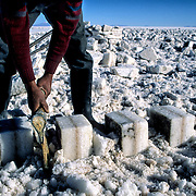 .  Salar de Uyuni ( Uyuni salt flat ) . Department  of Potosí  ( Los Lipez).  South West  Bolivia. <br /> Adult Altiplano America Andes Arid  Aridity Axe Barren  Bicycle Block  Bolivia Cleaver Color Colour Cone  Day Daytime  Department  Desert Desolate Desolation Dry  Exterior Extraction  Geography Hack Hard Hatchet  Heat Highlands  Horizon Horizontal Human  Latin America Lake  Los Lipez Male Man Men Miner Mining Nature  Resource  Natural  One Outdoors Outside  Pan People  Person Pyramide Potosí  Production  Region Resource Rural Salar de Uyuni  Salt Flat  Salt Pan  Salt lake  Scenic Seasoning  Single Shape South America  Southwest  Sud Sunglasses  Surface Travel  West White Work  Worker Working