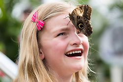 © Licensed to London News Pictures. 31/03/2015. London, UK. Ava Kennedy (aged six) with an owl butterfly on her head at the Sensational Butterflies exhibition at the Natural History Museum in London. The Sensational butterflies exhibition runs at the Natural History Museum in London from 2 April 2015 to 13 September 2015. Photo credit : Vickie Flores/LNP