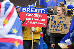 © Licensed to London News Pictures. 30/01/2020. London, UK. Pro-European supporters hold signs outside Houses of Parliament on the day before Brexit Day.  The UK will leave the European Union at 11pm on the 31 January 2020. Thereafter will be a transition period until the end of 2020, while the UK and EU negotiate additional arrangements. Photo credit: Dinendra Haria/LNP