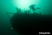 scuba divers explore the stern of the Rainbow Warrior wreck, Cavalli Islands, off North Island, New Zealand ( South Pacific Ocean )