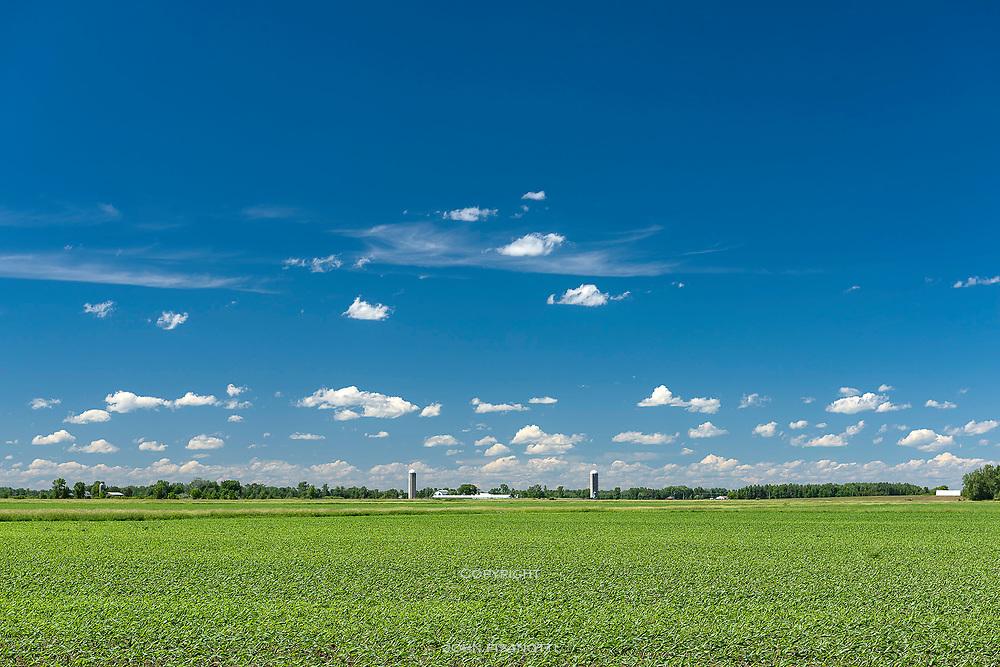 A farm near Shiocton, Wisconsin