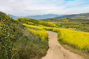 Hiking Trails at Las Ramblas In San Juan Capistrano