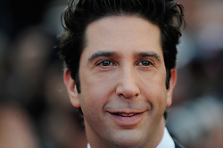 David Schwimmer  at the premiere of Madagascar 3 Europe's Most Wanted at the Cannes Film Festival, Friday, May 18th  2012. Photo by: Ki Price  / i-Images