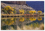 The Colorado River in autumn to the east of Grand Junction, Colorado, USA