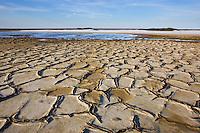 Drought patterns in salt pan near Salin-de-Giraud, Camargue, France