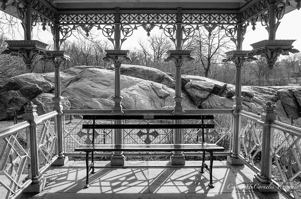 Central Park at The Hernshead.