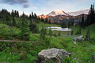 Morning light on Mount Rainier from above Upper Tipsoo Lake in Mount Rainier National Park, Washington State, USA