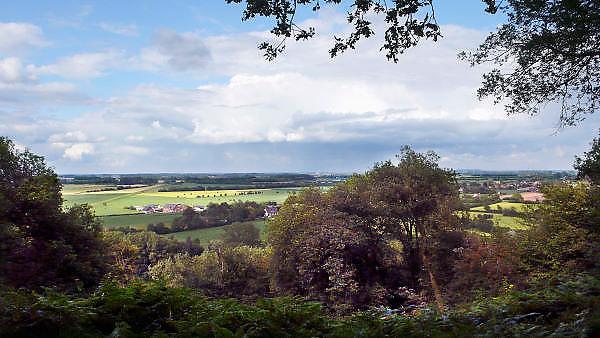 Nederland, Berg en Dal, 1-7-2011De Duivelsberg in Berg en Dal op de grens tussen Nederland en Duitsland. De Duivelsberg is een heuvel en natuurreservaat in de gemeenten Ubbergen en Groesbeek in de Nederlandse provincie Gelderland. De 75,9 meter hoge heuvel, in Duits Teufelsberg of Wylerberg , ligt op de stuwwal ten oosten van Nijmegen, tussen Berg en Dal, Beek en de Nederlands-Duitse grens. Het natuurgebied is voornamelijk begroeid met loofbomen, vooral met de tamme kastanje. De berg behoorde aanvankelijk toe aan het dorp Wyler in de Duitse gemeente Kranenburg. Na de Tweede Wereldoorlog behoorde de Duivelsberg tot de gebieden die Nederland op 23 april 1949 ten koste van Duitsland annexeerde.Foto: Flip Franssen/Hollandse Hoogte