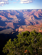 The Grand Canyon national park viewed from the south rim, Arizona, USA