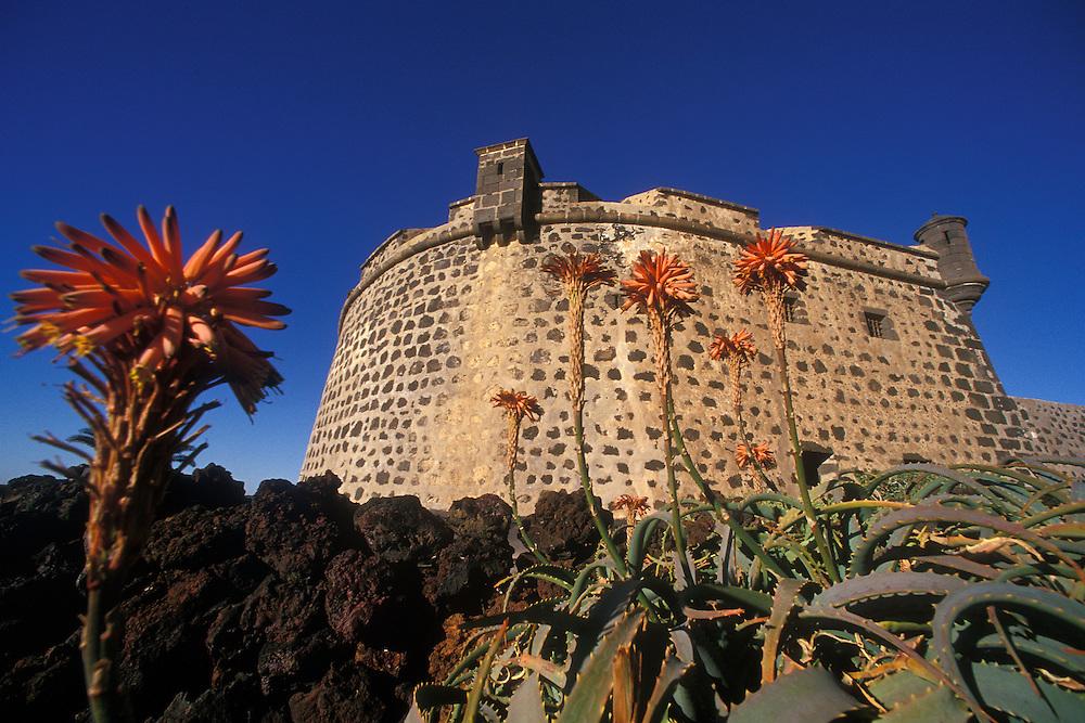España. Islas Canarias. Lanzarote..El Castillo de San José, sede del Museo de Arte Moderno..©JOAN COSTA
