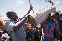 27 January 2019, Burka Dare IDP site, near Micha, Seweyna woreda, Bale Zone, Oromia, Ethiopia: Hussein Ibrahim, an internally displaced person from the Somali region,  demonstrates how the Oromo people make beehives by carving out logs of wood, to be hung in trees. Ibrahim lives in the Burka Dare IDP site. He is 65 years old, and one of the community elders. The Lutheran World Federation supports internally displaced people in several regions of Ethiopia, through emergency response on water, sanitation and hygiene (WASH) as well as long-term development and empowerment projects, to help build resilience and adapt communities' lifestyles to a changing climate.