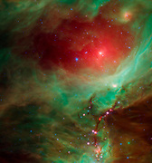 This image from NASA's Spitzer Space Telescope shows what lies near the sword of the constellation Orion -- an active stellar nursery containing thousands of young stars and developing protostars.