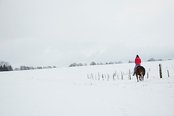 Rear view of a young woman riding a horse in winter, Bavaria, Germany
