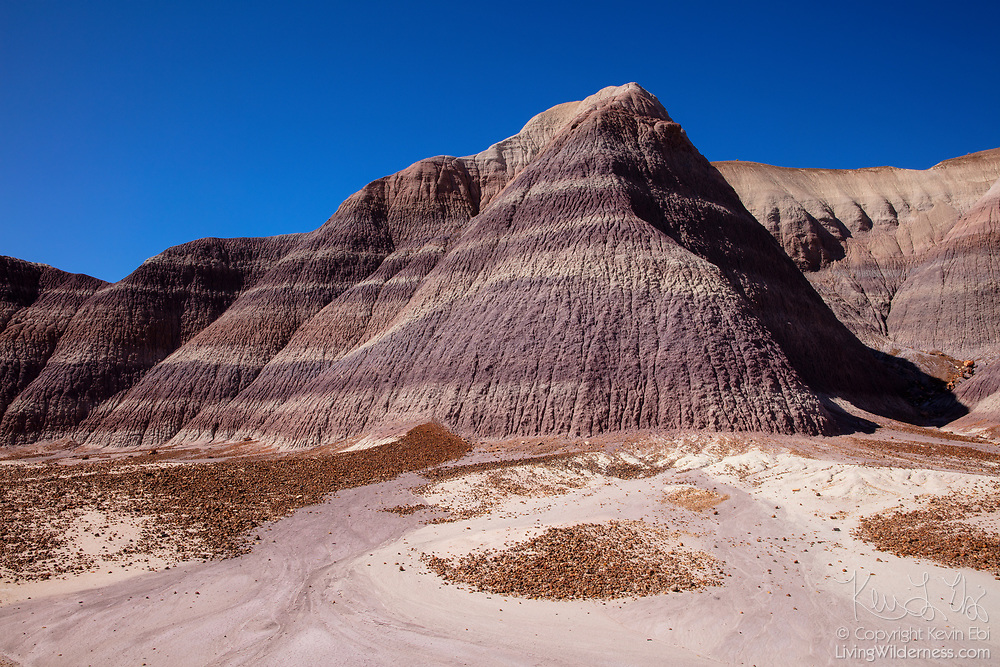 Erosion debris from petrified logs and the bentonite clay hills collects at the base of the badlands of the Blue Mesa in Petrified Forest National Park, Arizona.