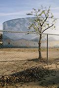 Murals in Bakersfield, Calif. show idyllic scenes of the environment.