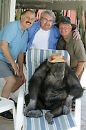 """EXCLUSIVE 24th June 2008, Palm Springs, California.  Cheeta's owner Dan Westfall (left) with record exec John Trickett  (center) and filmmaker and campaign manager Matthew Devlen (right), of the """"Go Cheeta"""" campaign, who are trying to get Cheeta the 76-year-old Chimp a star on the Hollywood Walk of Fame. Cheeta was the star of many Hollywood Tarzan films of the 1930s and 1940s,  PHOTO © JOHN CHAPPLE / www.johnchapple.com<br /> tel: +1-310-570-9100"""