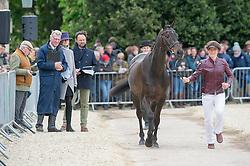 Sturgis Beanie, (GBR), Lebowski<br /> First Horse Inspection - Mitsubishi Motors Badminton Horse Trials <br /> Badminton 2015