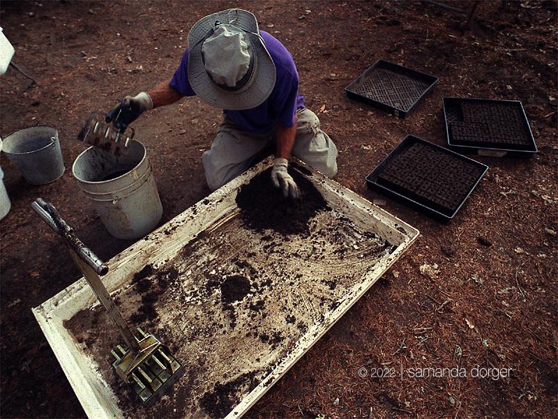 Noble mixes soil for soil blocks.