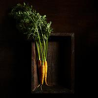 Raw, Fresh Carrots in Wood Box