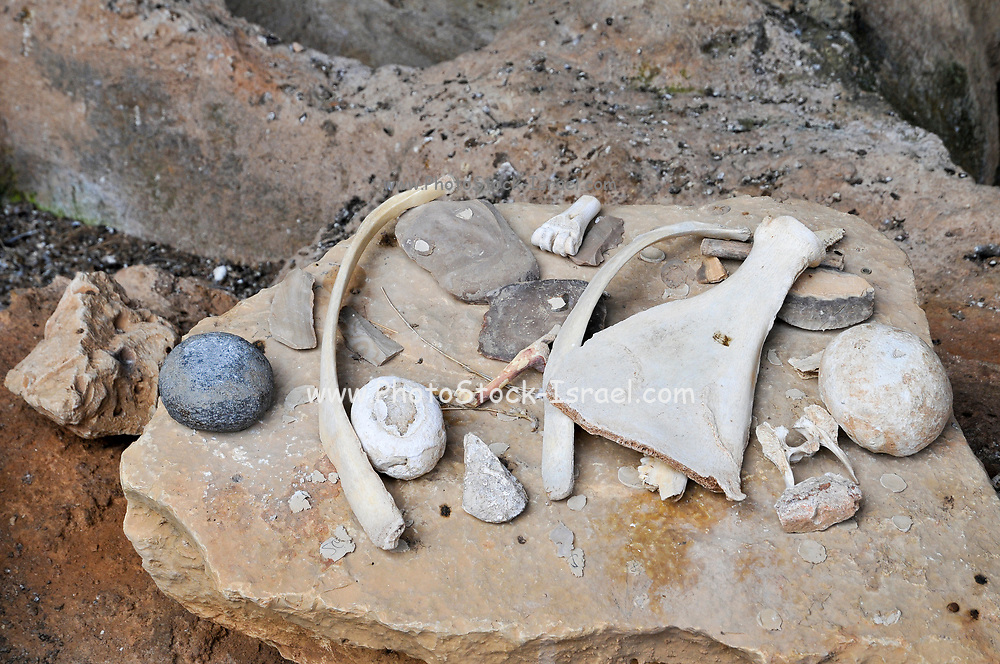 Hand Tools used by cavemen found in the caves on display. Photographed in Israel, Carmel Mountain, Nahal Mearot (Cave River) nature reserve containing caves used by prehistoric men for 150 thousand years in three distinct cultures Acheulian culture, Muarian culture and mousterian culture. starting with Homo erectus and ending with Neanderthal.