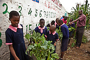 Nairobi, June 2010 -  The St. Michael's children educational center in Mathare provides education and basic health care for hundreds of children.