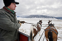 Michael Warburton drives a pair of horses while leading a sleigh ride tour on the National Elk Refuge. Warburton's family runs the sleigh rides and said they can run almost two dozen tours a day in the peak season.