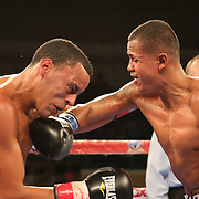 Alex Roman (R) fights against Edgardo Marin during a Telemundo boxing match at the Kissimmee Civic Center on Friday, July 17, 2015 in Kissimmee, Florida. Roman won the bout by unanimous decision. (AP Photo/Alex Menendez)