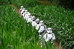 Review of the Year 2017: July: Members of the Sentinel Squad, a group of Star Wars fans dressed as stormtroopers, make their way through the York Maze to mark the 40th anniversary of Star Wars.