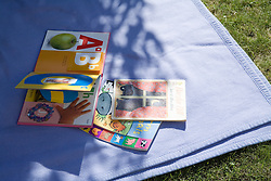 Collection of books on a blanket in a garden,