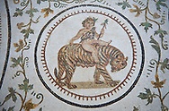 Pictures of a Roman mosaics design depicting Dionysus Riding a Panther, from Abdel Jelil. 2nd century AD. El Djem Archaeological Museum, El Djem, Tunisia. .<br /> <br /> If you prefer to buy from our ALAMY PHOTO LIBRARY Collection visit : https://www.alamy.com/portfolio/paul-williams-funkystock/roman-mosaic.html . Type - El Djem - into the LOWER SEARCH WITHIN GALLERY box. Refine search by adding background colour, place, museum etc<br /> <br /> Visit our ROMAN MOSAIC PHOTO COLLECTIONS for more photos to download as wall art prints https://funkystock.photoshelter.com/gallery-collection/Roman-Mosaics-Art-Pictures-Images/C0000LcfNel7FpLI