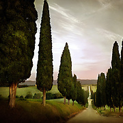 Special Series: Tuscany