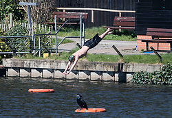 © Licensed to London News Pictures. 05/04/2020. London, UK. A man dives in to the ponds in Hampstead Heath, London, which is prohibited during a lockdown for pandemic outbreak of the Coronavirus COVID-19 disease. The public have been told they can only leave their homes when absolutely essential, in an attempt to fight the spread of coronavirus COVID-19 disease. Photo credit: London News Pictures.
