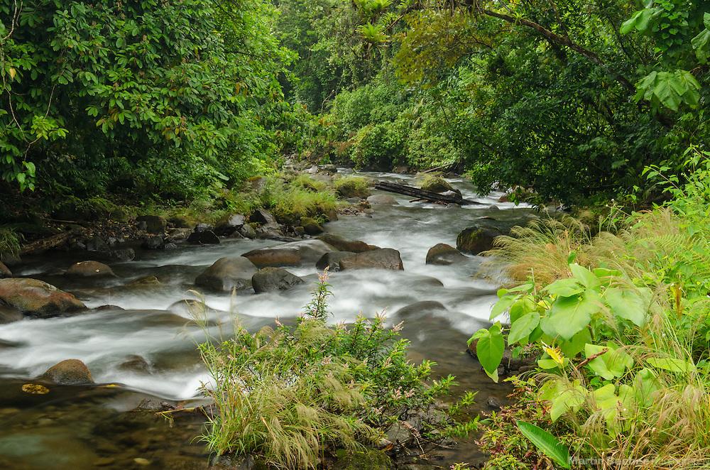 Danta River, Arenal area near El Castillo, Costa Rica