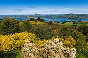 Otago Peninsula and Harbor from Mount Cargill, Otago, South Island, New Zealand