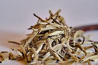 Chine, Province du Sichuan, thé blanc // China, Sichuan province, white tea