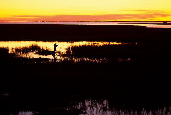 Stock photo of the silhouette of a man fishing from the reeds of a coastal area in Texas