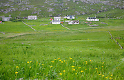 Landscape of countryside and croft houses in the rural settlement of Baile na Creige, Borgh, Barra, Outer Hebrides, Scotland, UK