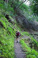 Backpacking Pine Ridge Trail, Big Sur, California.