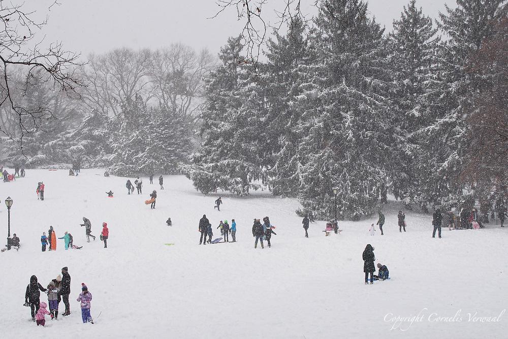 Sledding on Cedar Hill in Central Park