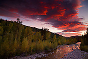 Anthracite Creek  with Fall colors at sunset along Kebler Pass Road, Colorado.