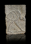 9th century BC stone Neo-Hittite/ Aramaean Orthostats from Palace Temple of the Aramaean city of Tell Halaf in northeastern Syria close to the Turkish border. The Orthostats are in a Neo Hittite style and depict a mythical Bird. Pergamon Museum, Berlin