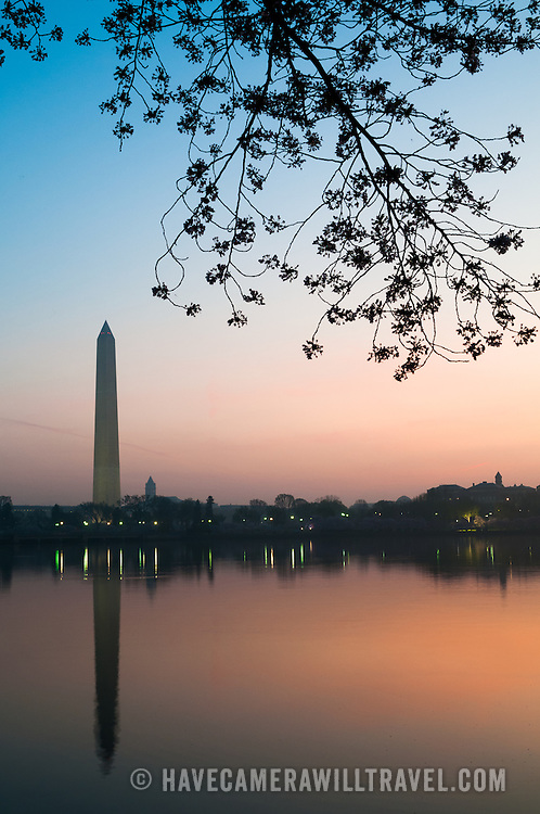 Just before sunrise, the Washington Monument is reflected on the still waters of the Tidal Basin. At top of frame are cherry blossom branches, with the flowers in bloom. The Yoshino Cherry Blossom trees lining the Tidal Basin in Washington DC bloom each early spring. Some of the original trees from the original planting 100 years ago (in 2012) are still alive and flowering. Because of heatwave conditions extending across much of the North American continent and an unusually warm winter in the Washington DC region, the 2012 peak bloom came earlier than usual.